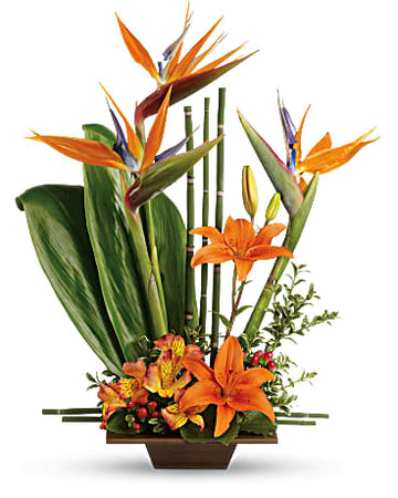 Teleflora's Exotic Grace Bouquet