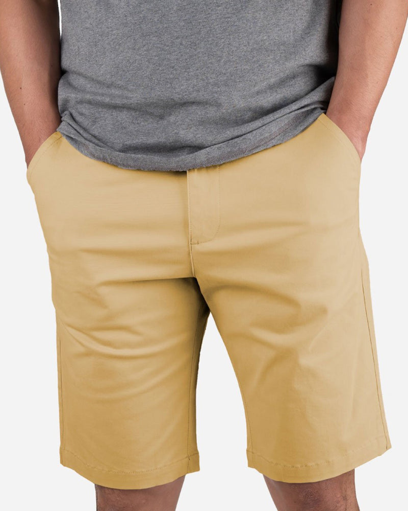 Cotton Chino Shorts 11