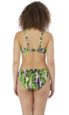 Jungle Oasis Cassis Bikini Brief, Pre-Order XS - 2XL