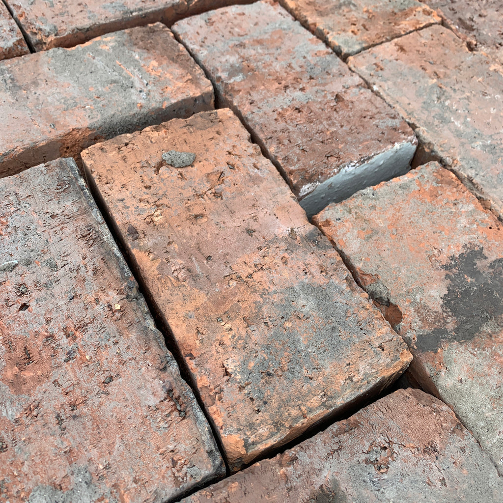 Reclaimed Wirecut Paving Bricks | Pack of 250 Bricks