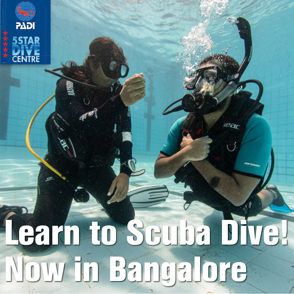 PADI® Open Water Referral Course