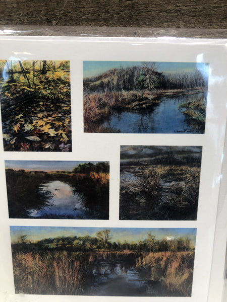 Laura Hammond- Toonkel, the artist, creates beautiful hand colored etchings, cards made from paintings.  Comes in a set of 5
