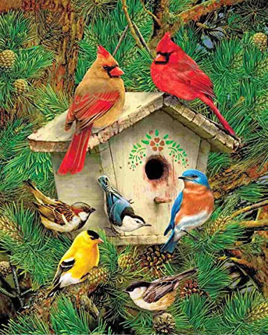 Feathered Retreat 1000 Piece Interlocking Jigsaw Puzzle (Made in the USA)