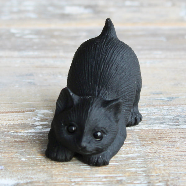 Black Obsidian Kitten