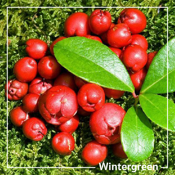 'Methyl Salicylate' or 'Wintergreen Oil' That Works for Pain Relieving