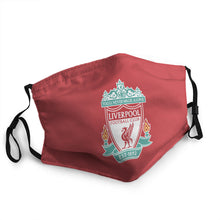 Load image into Gallery viewer, LFC Mask (PM 2.5)