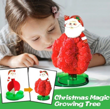 Load image into Gallery viewer, Magic Growing Christmas Tree