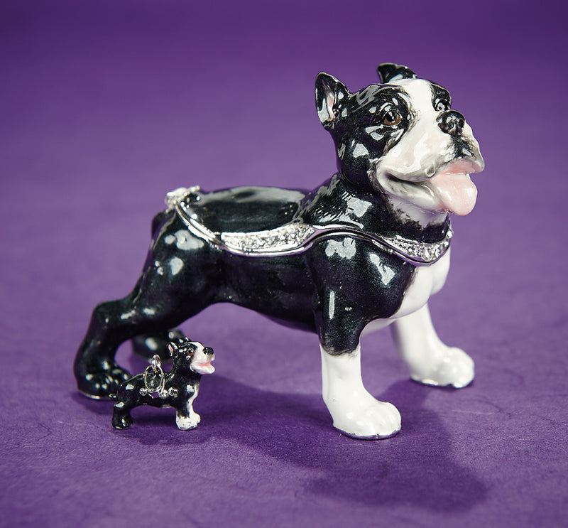 Pit Bull Trinket Box with Necklace