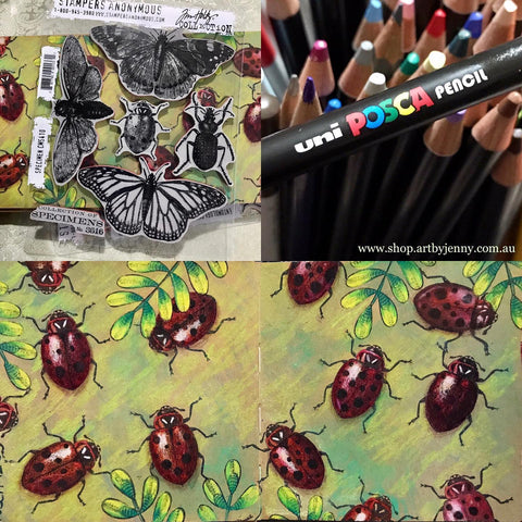 colouring ladybeetles and ladybugs with Tim Holtz Specimens and Posca Pencils