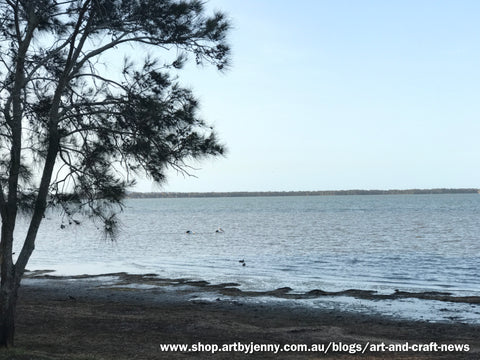 Lake near Tuggerah, Central Coast