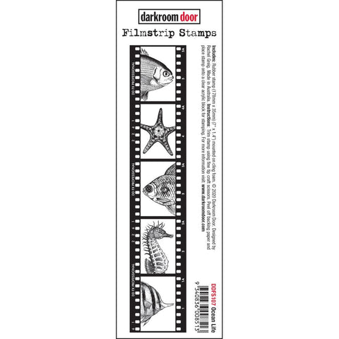 Ocean Life  Filmstrip - cling foam mounted rubber stamps by Darkroom Door