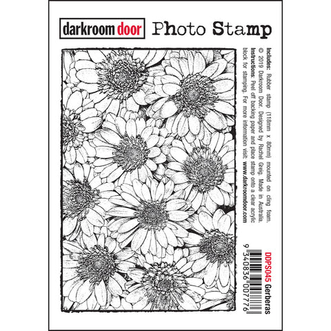 Gerberas - Rubber Art Stamp by Darkroom Door