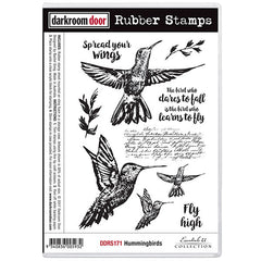 Darkroom Door Hummingbirds stamp set