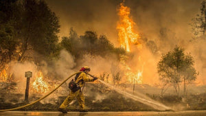 DONATE: ca wildfire disaster relief