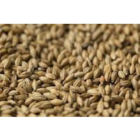 Gladfield American Ale Malt - Three Chins Brewing