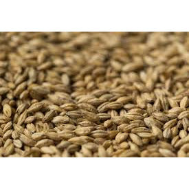 Gladfield Pilsner Malt - Three Chins Brewing