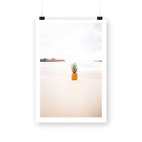 Beach pineapple by haar