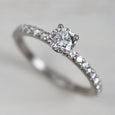 5mm Pave Basket Solitaire •