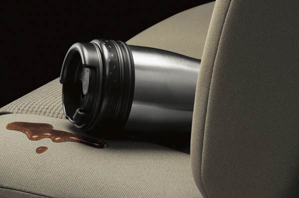 Diy steps in removing common car stains - How to remove mold stains from car interior ...