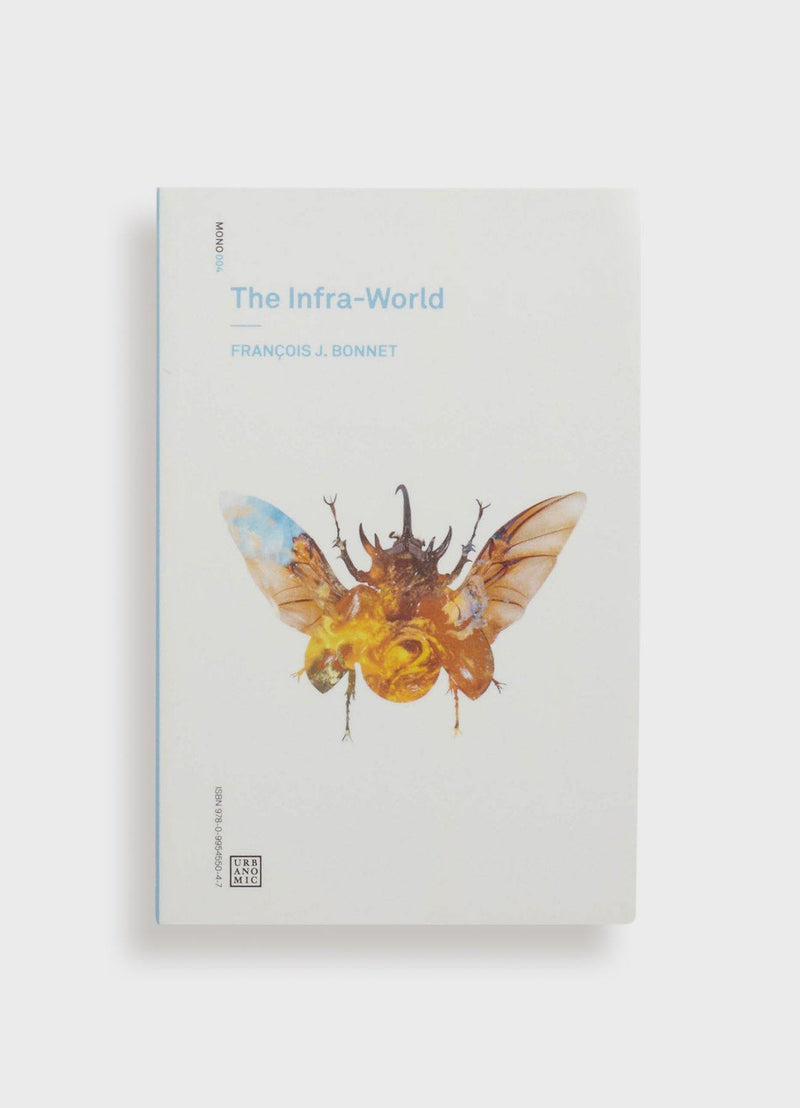 The Infra-World