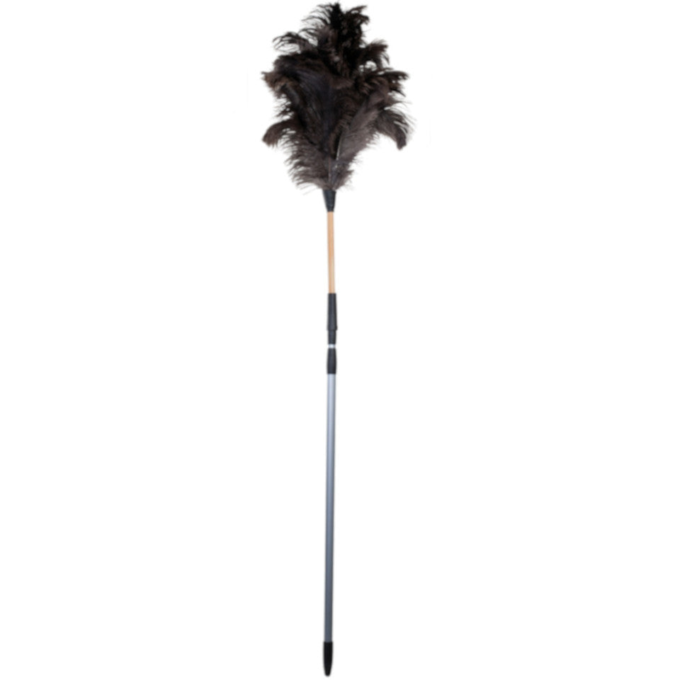 150 cm to 220 cm ostrich feather duster, untreated beechwood and plastic extendable handle.