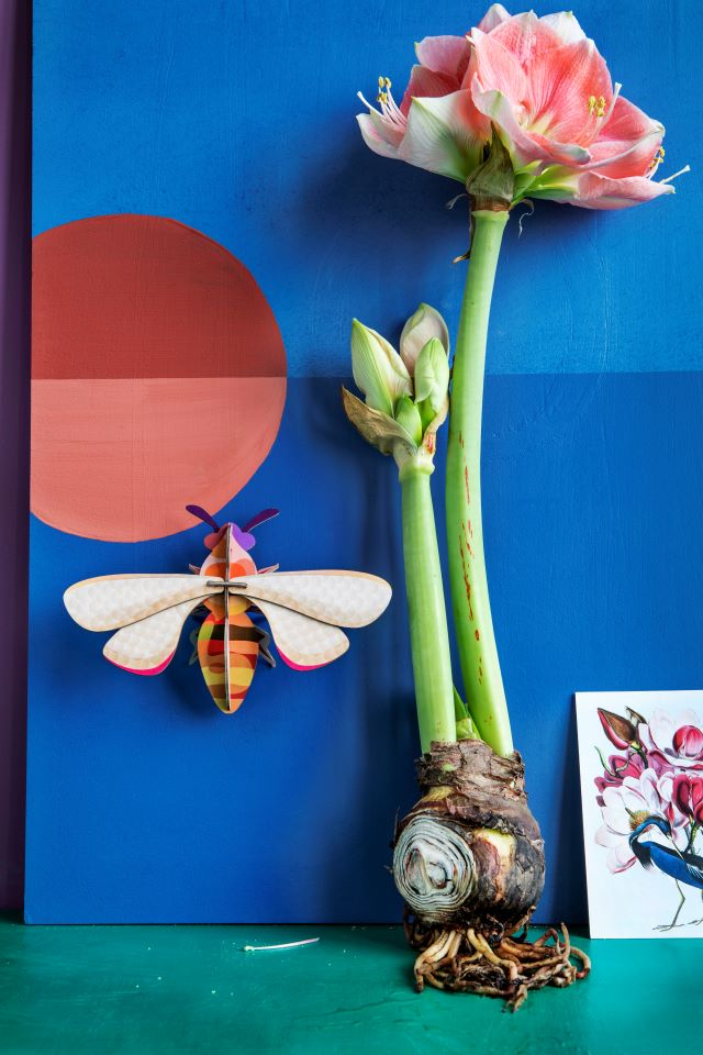 Honey Bee Wall Decoration