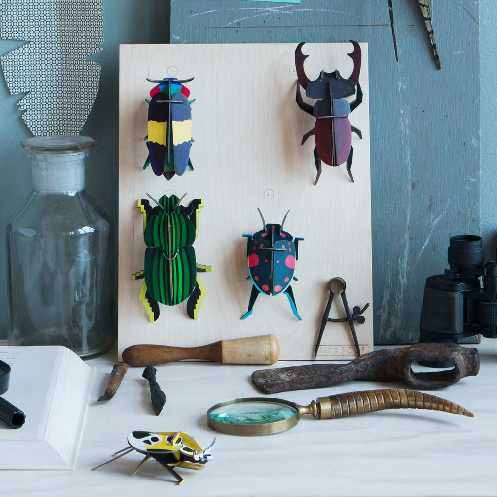 Beetle Wall Decoration