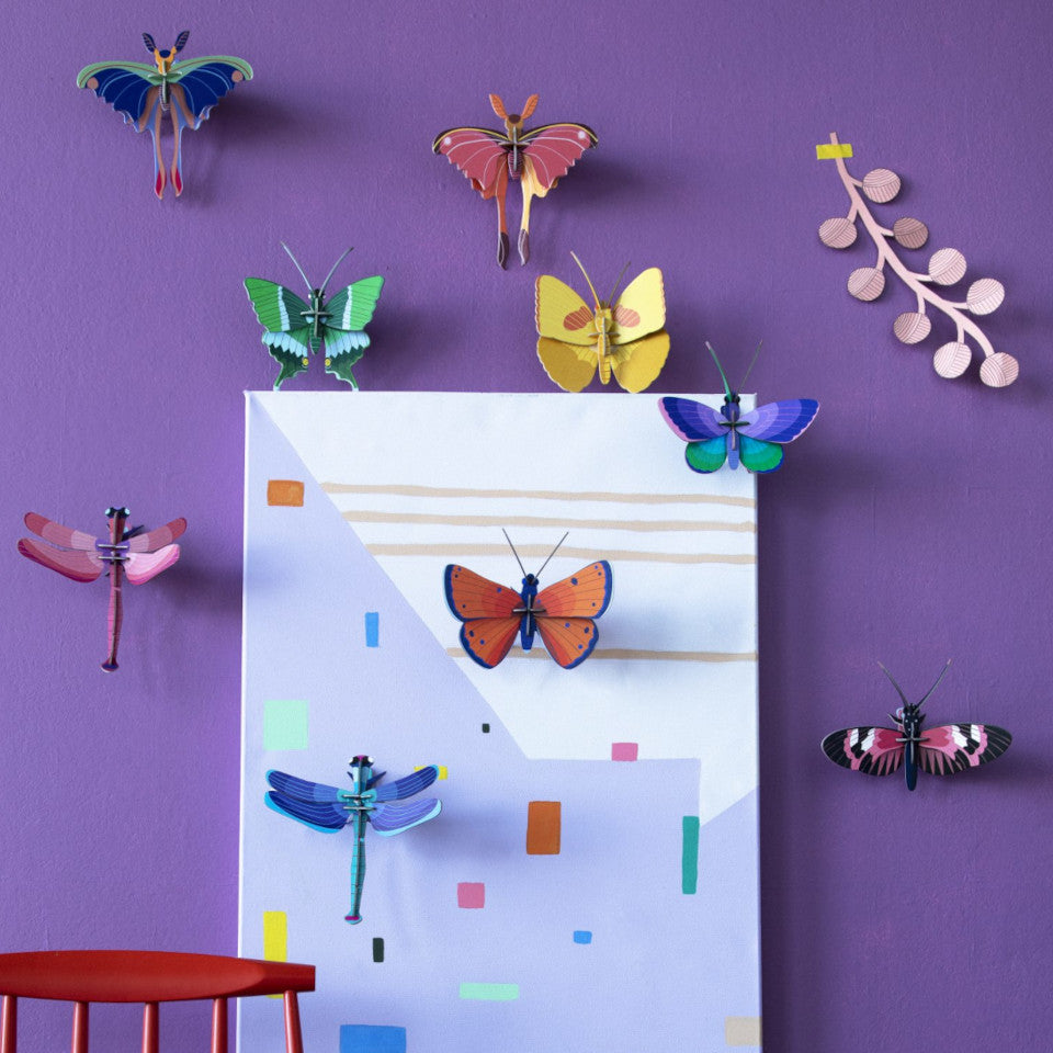Comet, Yellow, Blue-copper, Copper nad Longwing butterflies, and pink and blue dragonflies styledon a purple wall with a painting and the top of a red chair.