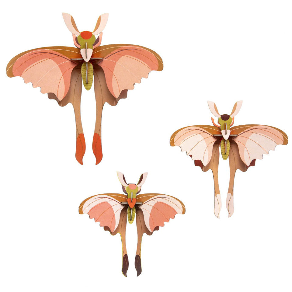 Comet butterfly wall decoration, set of 3.