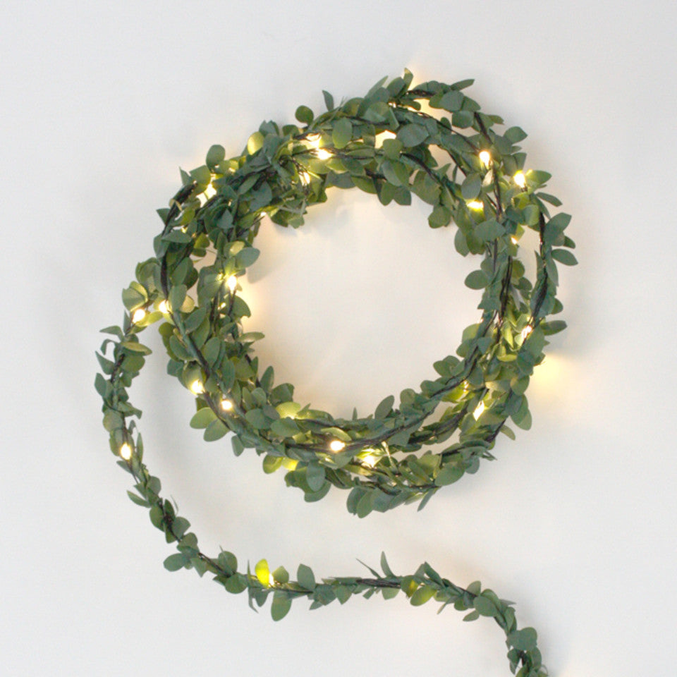 Greenery light chain - battery operated.