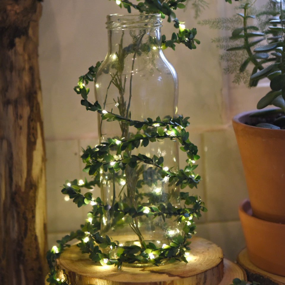 Greenery light chain - battery operated, styled wrapped around a glass bottle.