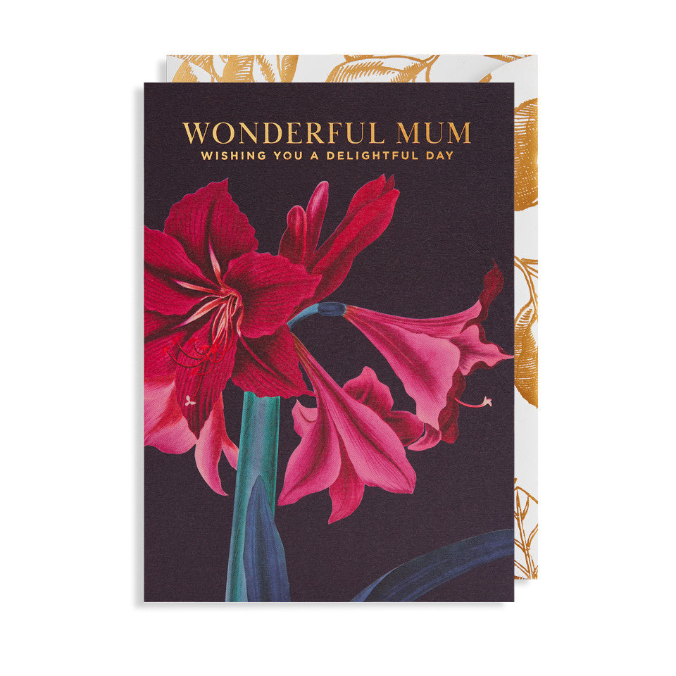 Wonderful Mum Wishing You A Delightful Day blank Mother's Day card, large red ameryllis on a dark grey background with 'wonderful mum wishing you a delightful day' in gold text, with white and gold foil floral envelope.