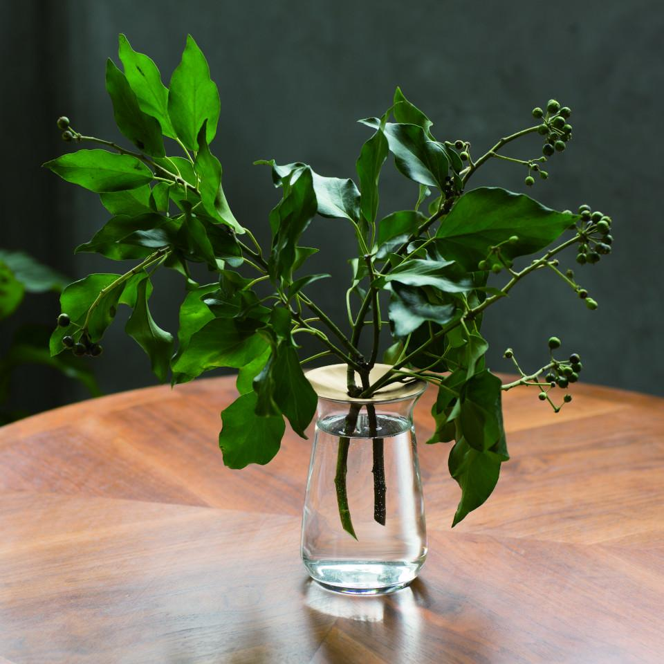 Luna large glass vase with brass collar, styled with foliage.