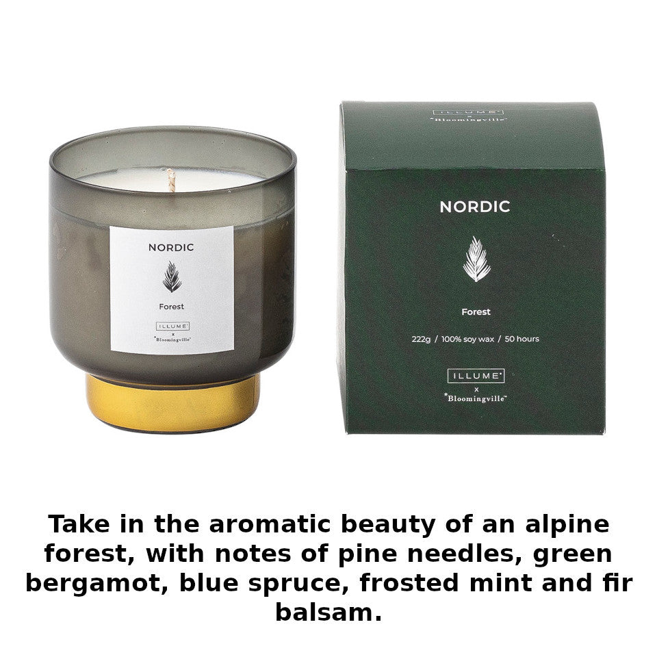 Nordic forest scented candle, green vessel with gold base, in gift box, with scent notes (pine needles, green bergamot, blue spruce, frosted mint and fir balsam).