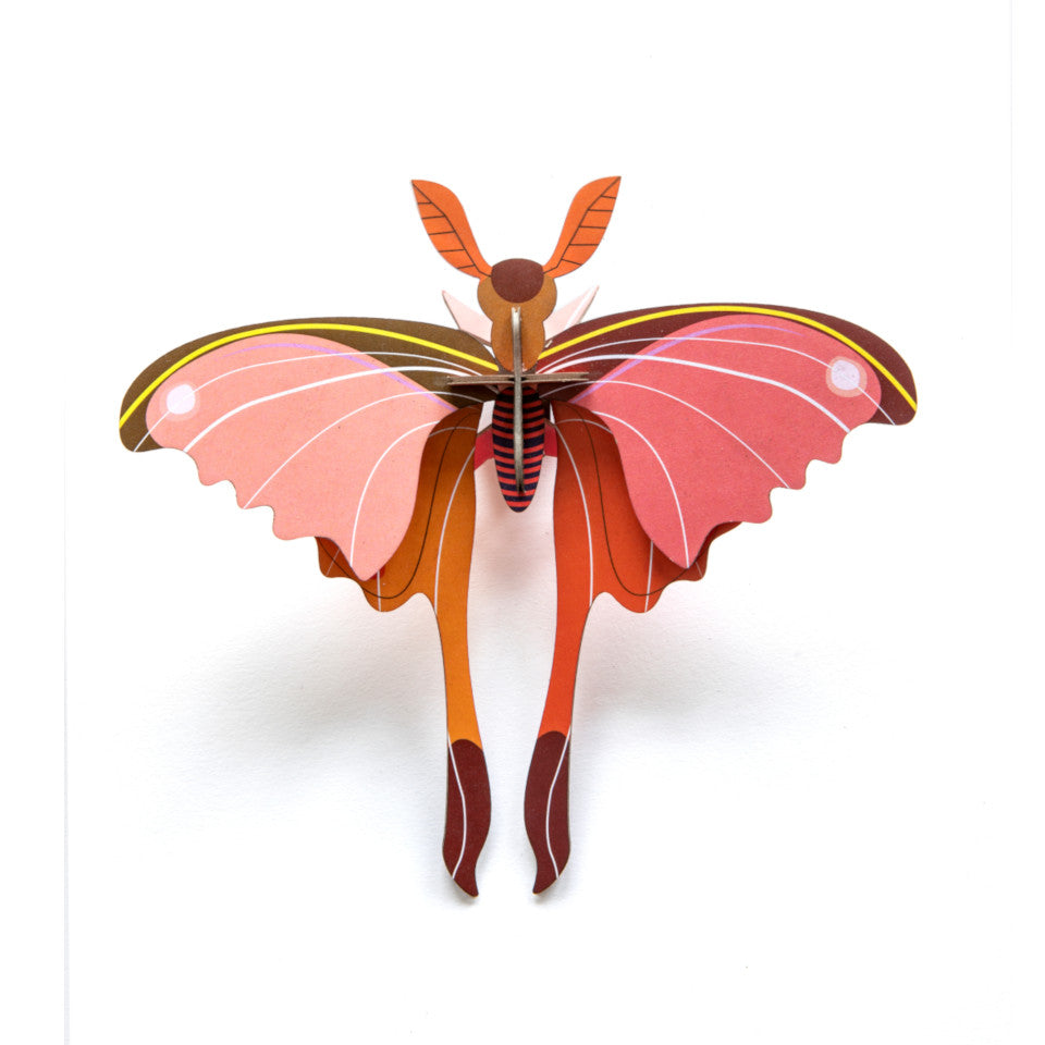 Pink Comet butterfly cardboard decorative object.