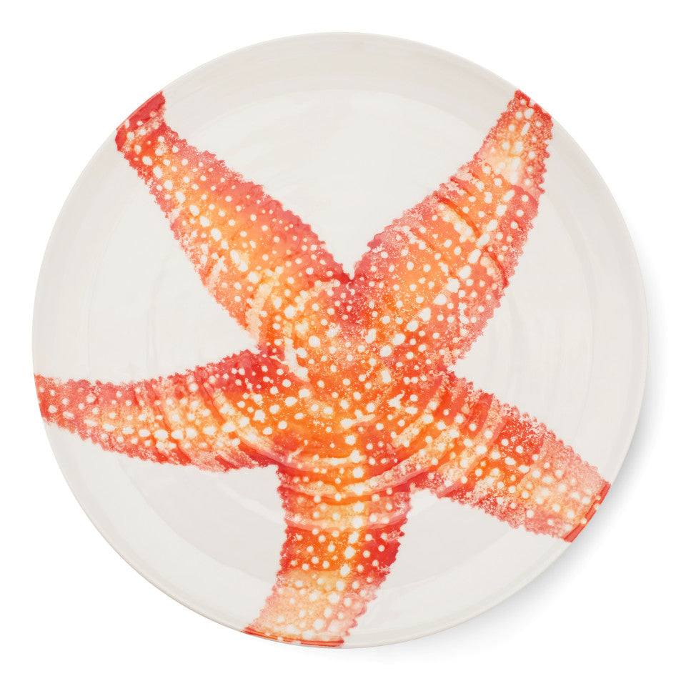 Sea Creatures earthenware Starfish platter, 36.5 cm.
