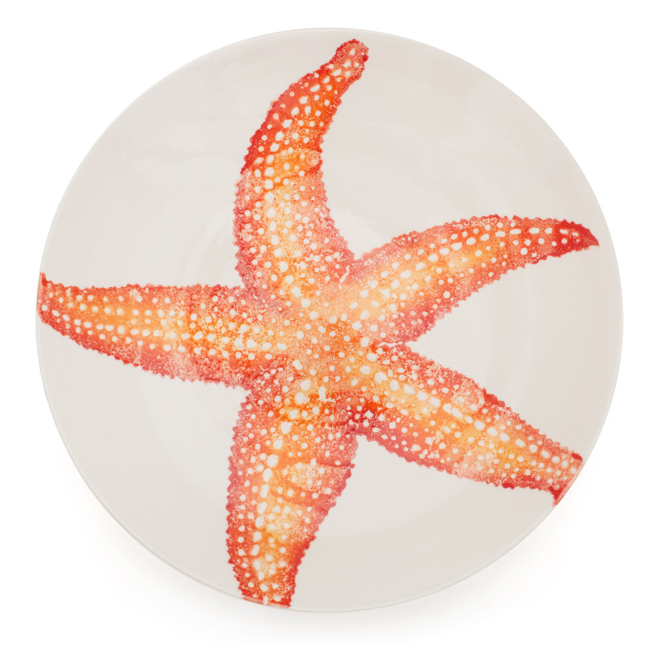 Sea Creatures earthenware Starfish platter, 39 cm, from above.