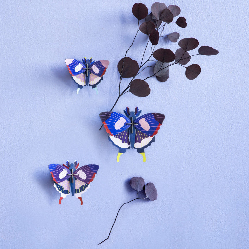 Swallowtail butterfly wall decoration, set of 3, styled on a pale blue wall with dried leaves.