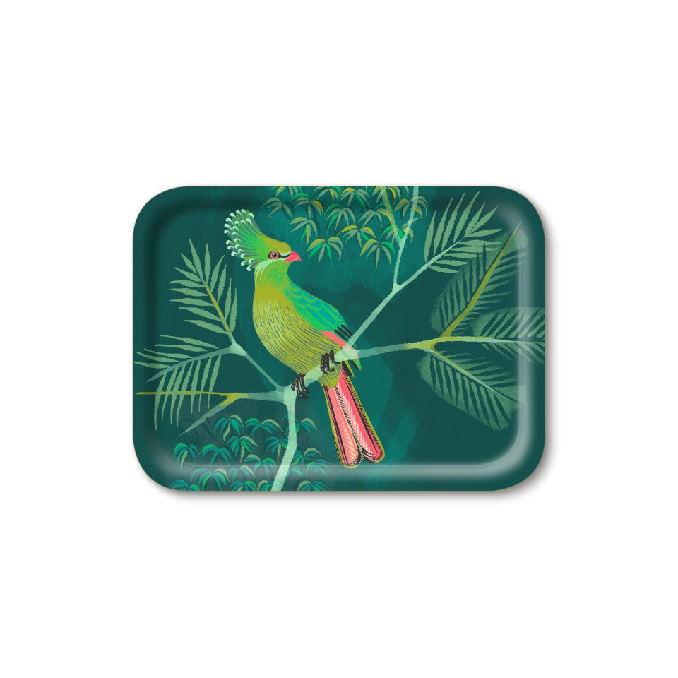 Turaco by Asta Barrington, turaco on tropical tree branch on green background, 27x20 cm small rectangular tray.