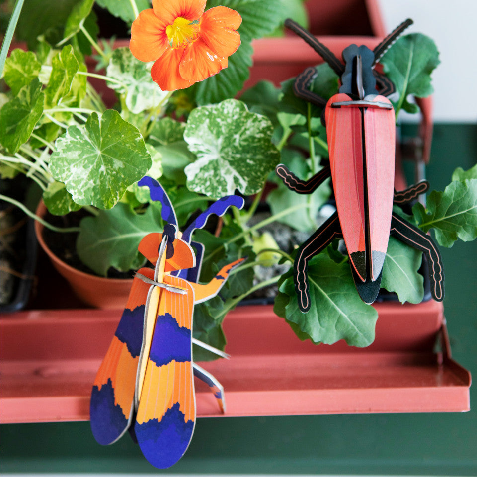 Winged and Longhorn beetle cardboard decorative object, styled with a flowering plant.