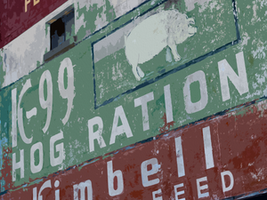 Hog Ration - Texas Media Foundry Truck Poster Canvas