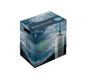 MIX 12 Botellas Aguas Light Gas y Natural 375 cc