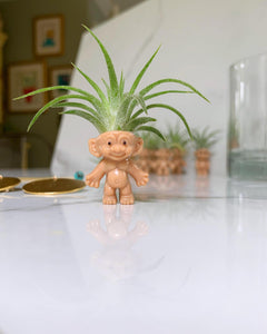 Troll with Air Plant Hair