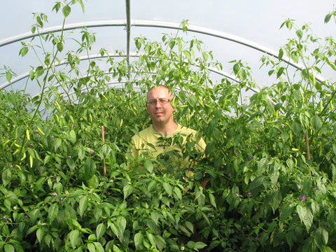I'm Neil - the owner and founder of Professor Pods Artisan Chilli Sauces