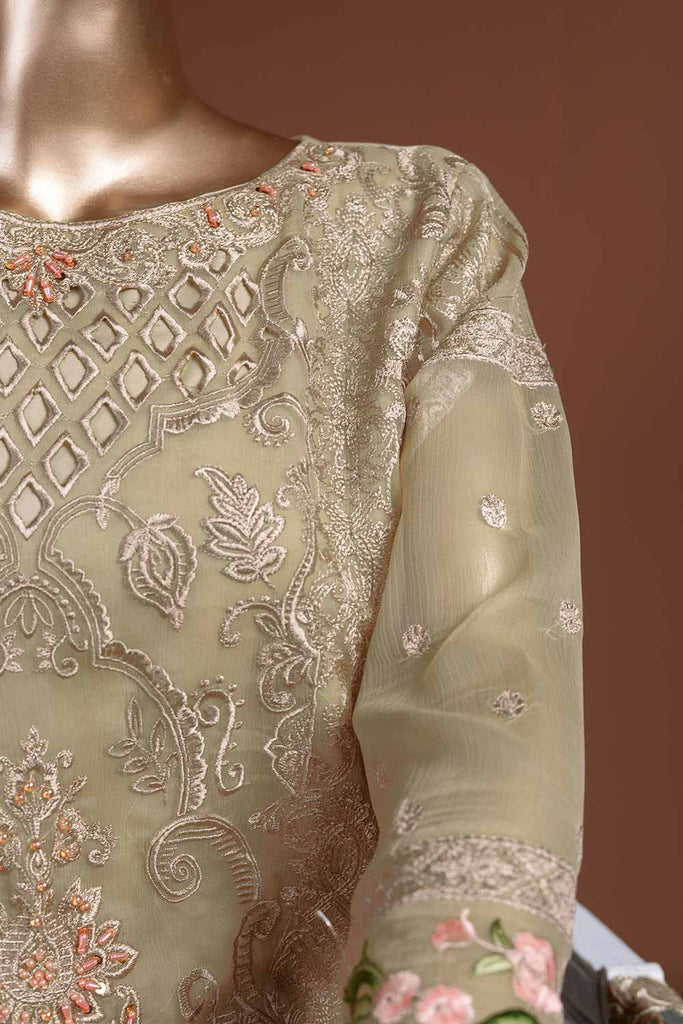 Earthly Appeal (G7-2A) Embroidered Skin Chiffon Dress with Embroidered Chiffon Dupatta