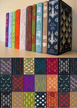 Afbeelding in Gallery-weergave laden, Penguin clothbound classics