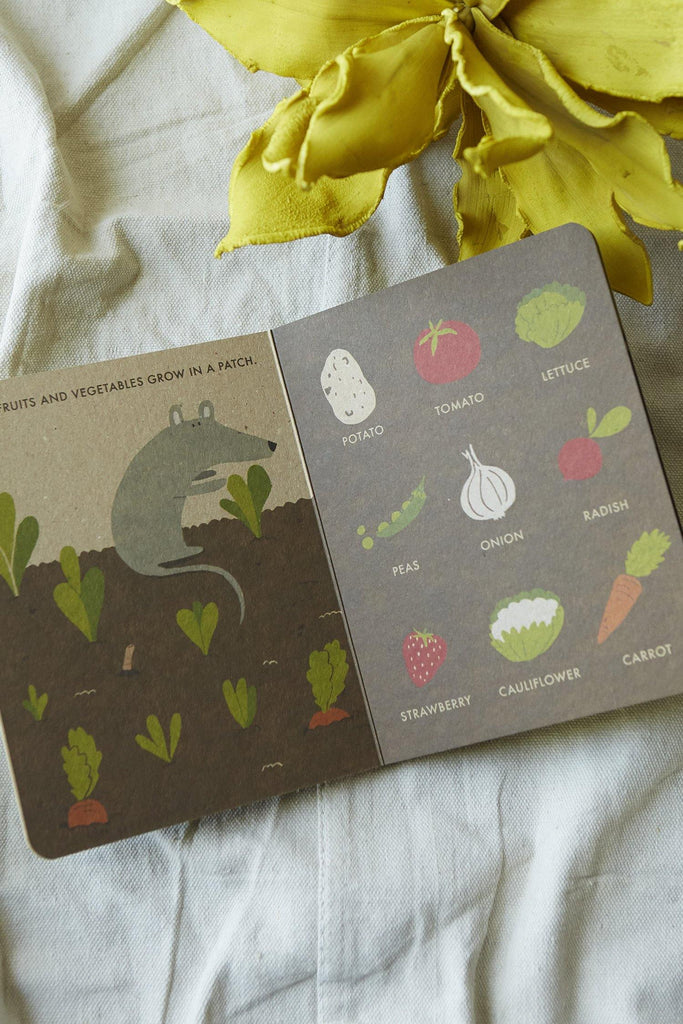 My Little Garden (A Natural World Board Book)