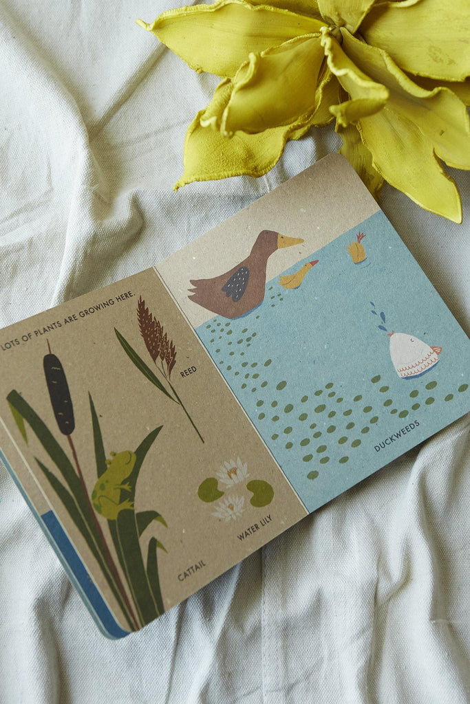 My Little Pond (A Natural World Board Book) - Patina Vie