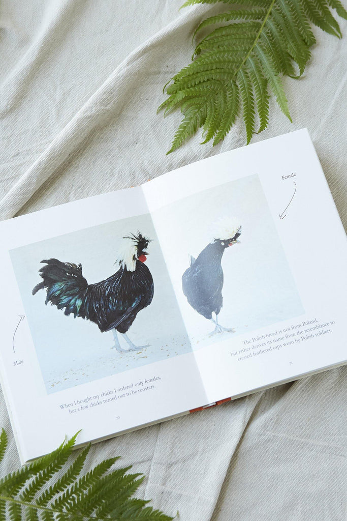 My Chickens and I - Patina Vie