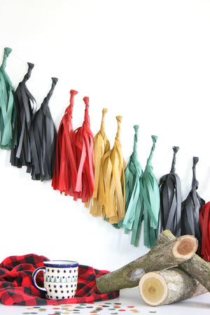 Tissue Paper Tassel Garland Kit - Fireside